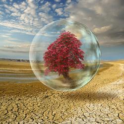 Пазл онлайн: Дерево в пузыре