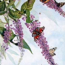 Пазл онлайн: Сирень и бабочки