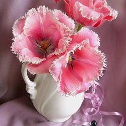 Пазл онлайн: Бахромчатые тюльпаны