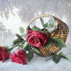 Пазл онлайн: Розы на снегу