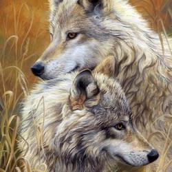 Пазл онлайн: Волчья пара