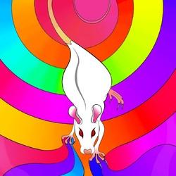 Пазл онлайн: Крыса