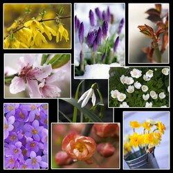 Пазл онлайн: Пробуждение весны