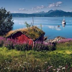 Пазл онлайн: Лофотены летом