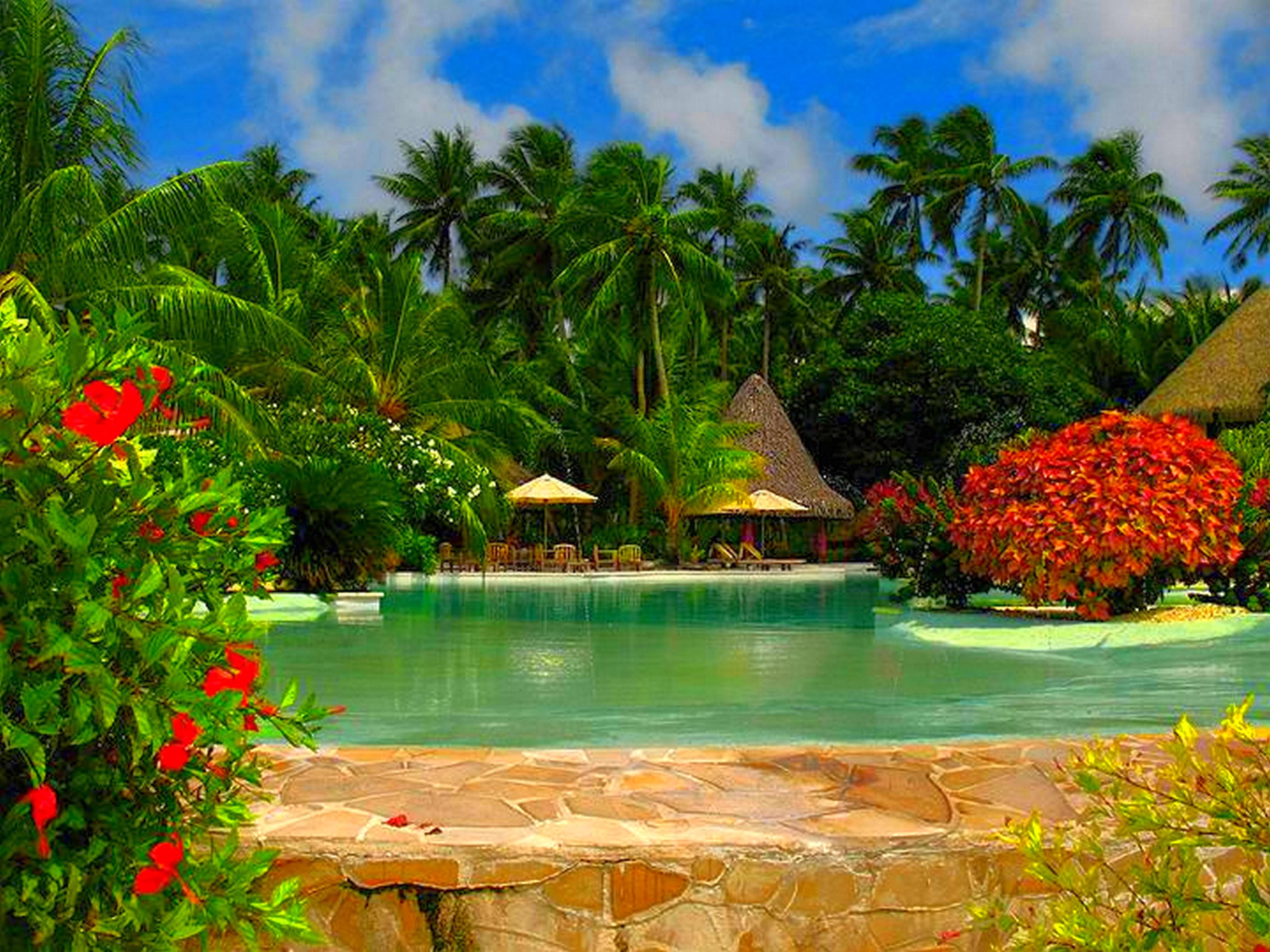 картинки о природе рай различные интересные