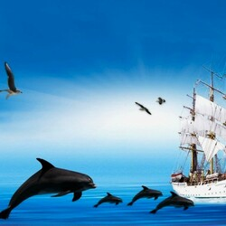 Пазл онлайн: В голубом океане