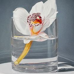 Пазл онлайн: Орхидея в стакане