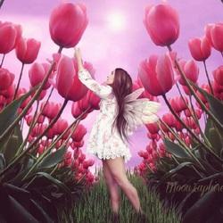 Пазл онлайн: Сад тюльпанов