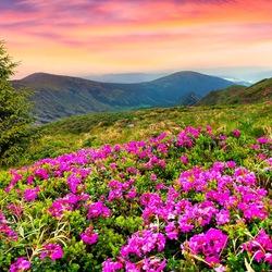 Пазл онлайн: Весна в горах