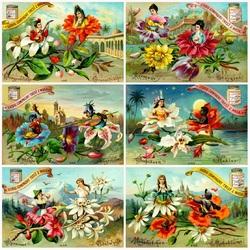 Пазл онлайн: Любовь цветов