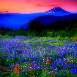 Пазл онлайн: Голубая долина