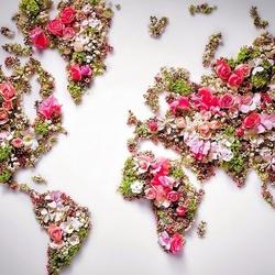 Пазл онлайн: Карта из цветов