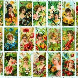Пазл онлайн: Язык цветов