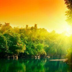 Пазл онлайн: Все залито солнцем