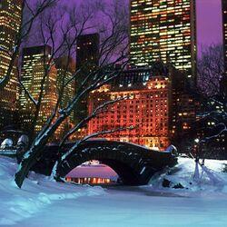 Пазл онлайн: Зима в центральном парке Нью Йорка
