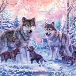 Пазл онлайн: Арктические волки