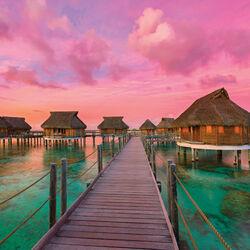 Пазл онлайн: Красочный рай