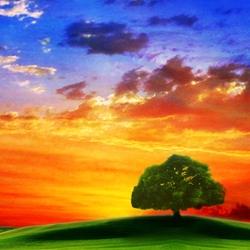 Пазл онлайн: Закат над полями