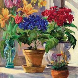 Пазл онлайн: Комнатные цветы