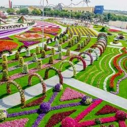 Пазл онлайн: Парк цветов в Дубаях