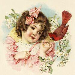Пазл онлайн: Кусочек для кардинала