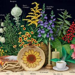 Пазл онлайн: Дары растений