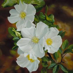Пазл онлайн: Белые цветы
