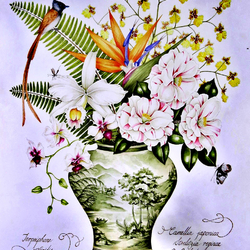 Пазл онлайн: Цветы тропиков