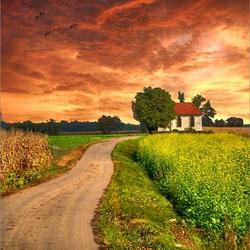 Пазл онлайн: Дорога к дому