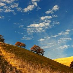 Пазл онлайн: Бродит осень по полям