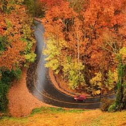 Пазл онлайн: По осенней дороге
