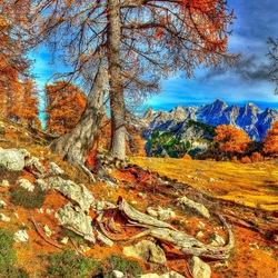 Пазл онлайн: Осень в Словении