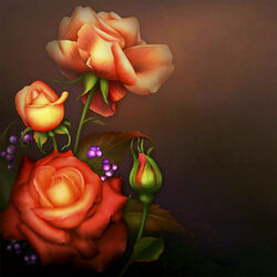 Пазл онлайн: Розы в октябре