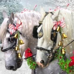 Пазл онлайн: Пара лошадей