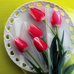 Пазл онлайн: Тюльпаны на тарелке