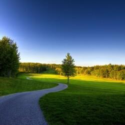 Пазл онлайн: Светлая дорога