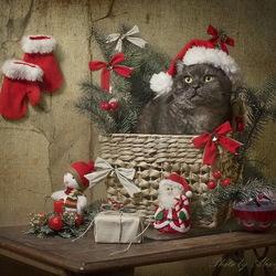 Пазл онлайн: Новогодний котик