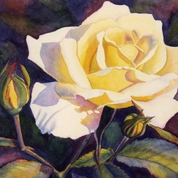 Пазл онлайн: Жёлтая роза