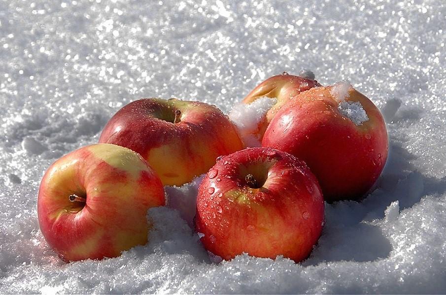 Картинки барселона, анимация яблоки на снегу