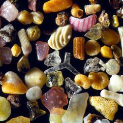 Пазл онлайн: Морской песок под микроскопом