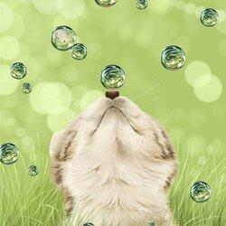 Пазл онлайн: Волшебные пузырьки