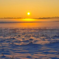 Пазл онлайн: Желтое солнце