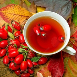 Пазл онлайн: Чай с шиповником