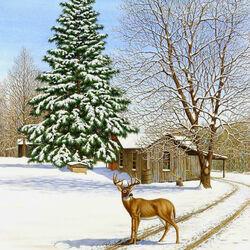 Пазл онлайн: Следы на снегу