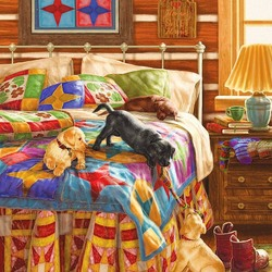 Пазл онлайн: Щенки на кровати