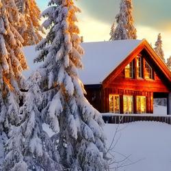 Пазл онлайн: Красота зимы