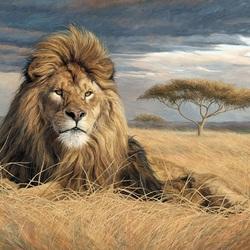 Пазл онлайн: Король саванны