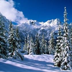 Пазл онлайн: Зима в Сибири