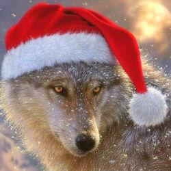 Пазл онлайн: Новогодний волк
