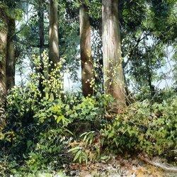 Пазл онлайн: Чудесно в лесу